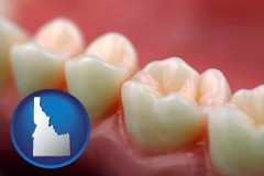 idaho map icon and teeth and gums