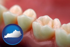 kentucky map icon and teeth and gums