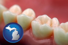 michigan map icon and teeth and gums