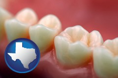 texas map icon and teeth and gums